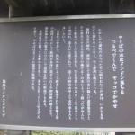 1今井家墓石移設工事 004